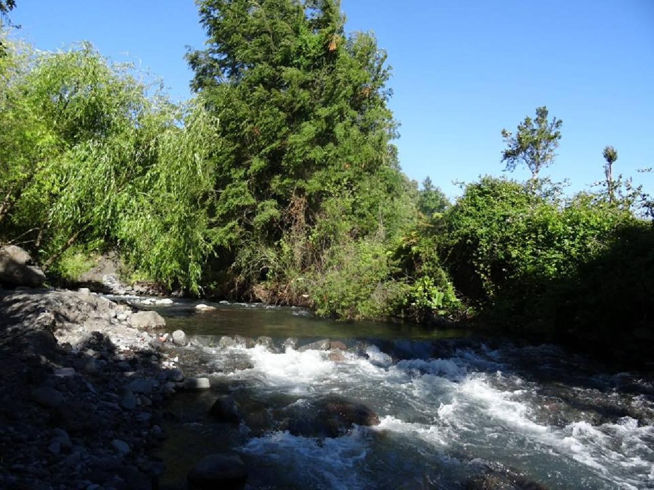 Cabañas Rio Blanco
