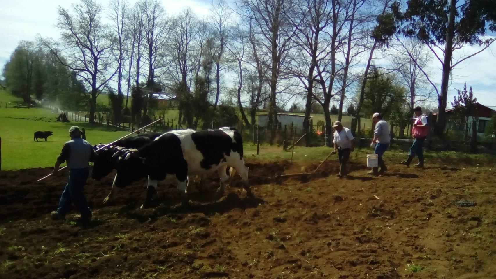 Turismo Rural Los Esteros